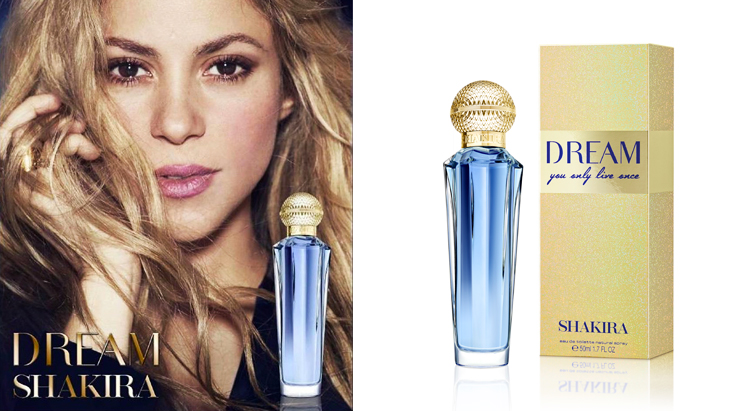 Dream You Only Live Once, Shakira